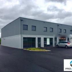 Location Local commercial Criquebeuf-sur-Seine 58 m²