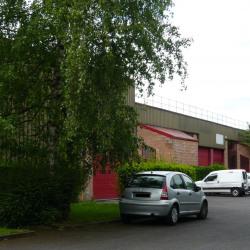 Location Local d'activités Collégien 291 m²