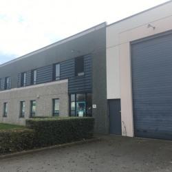 Location Local d'activités Lesquin 509 m²