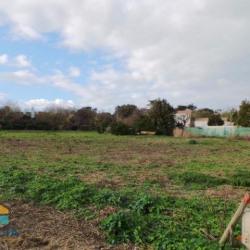 Vente Terrain Noirmoutier-en-l'Île 0 m²