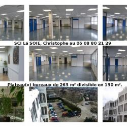 Location Bureau Lyon 1er 10 m²