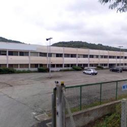 Vente Local d'activités Saint-Romain-en-Gier 10000 m²