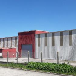 Location Entrepôt Saint-Romain-de-Colbosc 1371 m²