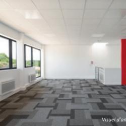 Vente Entrepôt Bailly-Romainvilliers 1188 m²