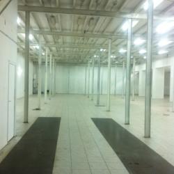 Location Local d'activités Romainville 1000 m²