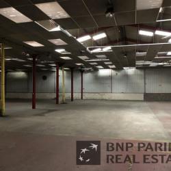 Location Local d'activités Saint-Léger-du-Bourg-Denis 1142 m²
