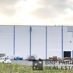 Location Local d'activités Tourcoing 2050 m²