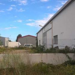 Location Local d'activités Perpignan (66000)