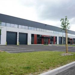 Location Local d'activités Strasbourg (67200)