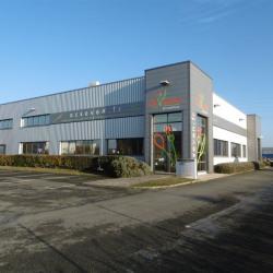 Location Local d'activités Chartres 260 m²