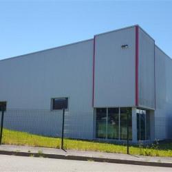 Location Local d'activités Pacé 1118 m²