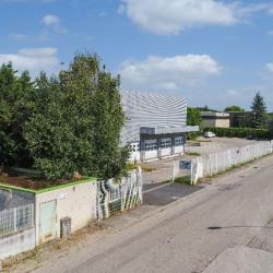 Vente Local d'activités Miribel 2541 m²