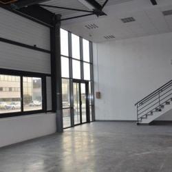 Location Local d'activités Chanteloup-en-Brie 234 m²
