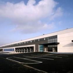Location Entrepôt Survilliers 19639 m²