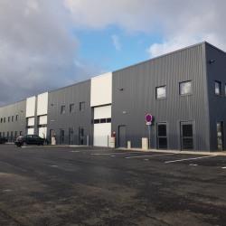 Location Entrepôt Croissy-Beaubourg 370 m²