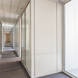 Location Bureau Paris 9ème 223 m²
