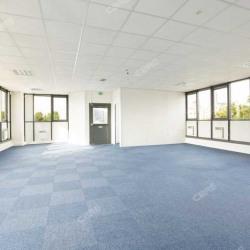 Location Bureau La Plaine Saint Denis 200 m²