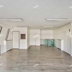 Vente Local d'activités Chevilly-Larue 91 m²