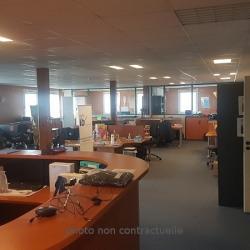 Vente Local d'activités Sandouville 570 m²