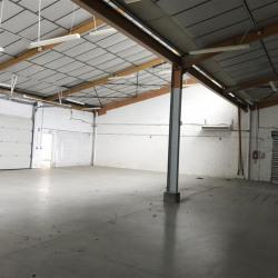 Location Local d'activités Montauban 338 m²