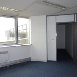 Location Bureau Blagnac 40 m²