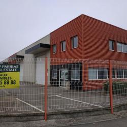 Location Local d'activités Fléville-devant-Nancy 540 m²
