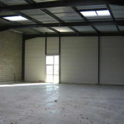 Location Local d'activités Marguerittes 300 m²