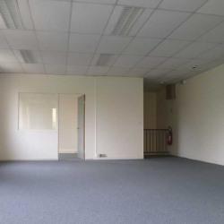 Location Local d'activités Coignières 501 m²