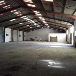 Vente Local d'activités Castillon-du-Gard 837 m²