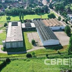 Vente Local d'activités Bischwiller 4730 m²