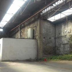 Location Local d'activités Sète 1000 m²
