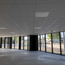 Location Bureau Schiltigheim 4370 m²