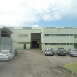 Location Bureau Ducos 45 m²
