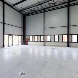 Location Local d'activités Maurepas 1290 m²