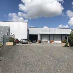 Location Local d'activités Beaupuy 2100 m²