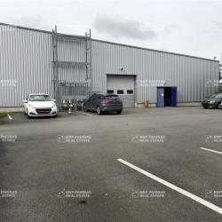 Location Local d'activités Villeneuve-d'Ascq 1369 m²