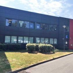 Location Local d'activités Marcq-en-Barœul 1050 m²