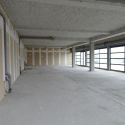 Location Local commercial La Salvetat-Saint-Gilles 194 m²