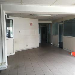 Location Local d'activités Coignières 534 m²