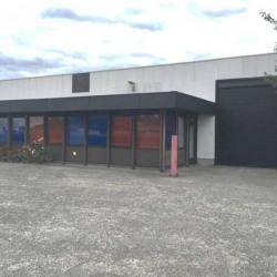 Location Local d'activités Fretin 590 m²