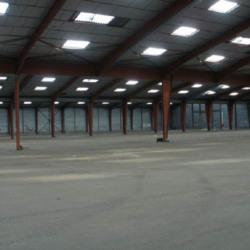 Location Entrepôt Saint-Gelais 9600 m²
