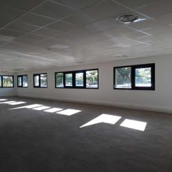 Location Bureau Canéjan 1236 m²
