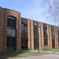 Location Bureau Lingolsheim 196 m²