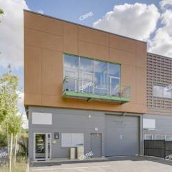 Vente Local d'activités Villebon-sur-Yvette 328 m²