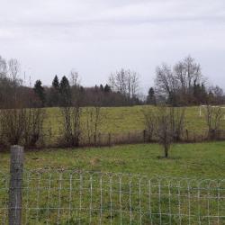 Terrain  de 866 m²  Thollon-les-Mémises  (74500)