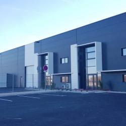 Location Entrepôt Montbartier 7500 m²