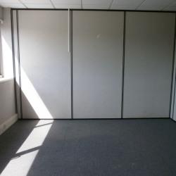Location Bureau Savigny-le-Temple 36 m²