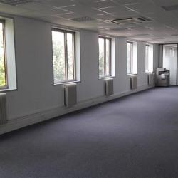 Location Bureau Villepinte 123 m²