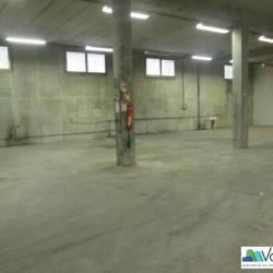 Location Local d'activités Neuilly-sur-Marne 517 m²