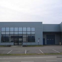 Vente Local d'activités Eckbolsheim 289 m²